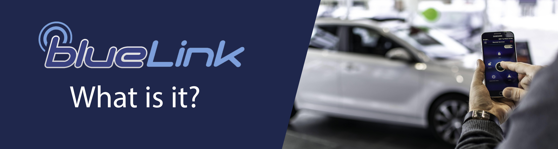 BlueLink® Banner